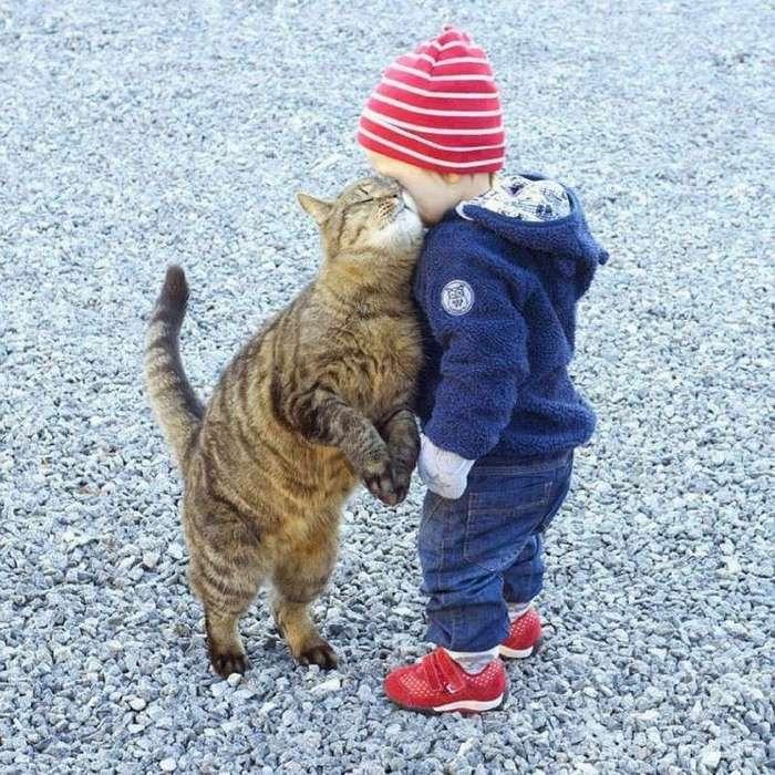 Вот почему каждому ребёнку нужен кот (31 фото)