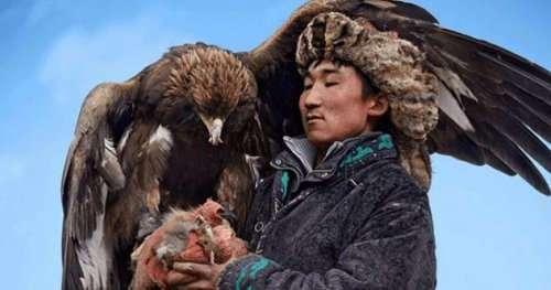 Топ-10: самые удивительные факты про орлов