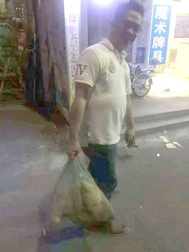 В Китае спасли пёсика, которого продавали на мясо. Спустя месяц на свободе его не узнать! (9 фото)