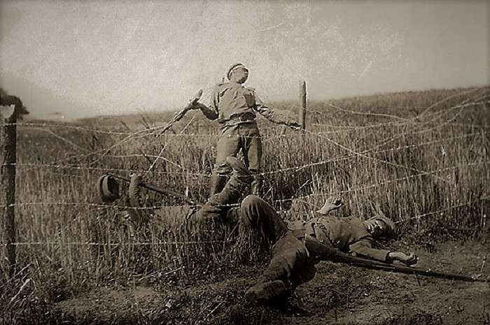 Брусиловский прорыв (17 фото)
