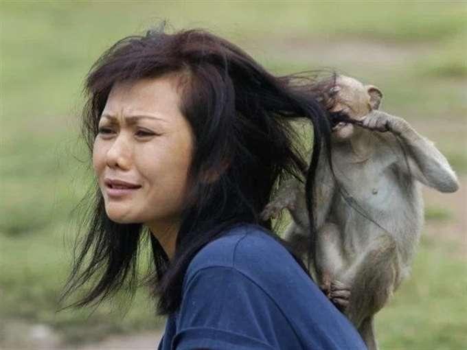 23 смешных доказательств того, что животные ненавидят женщин (24 фото)