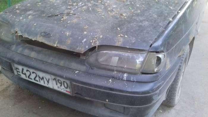 Подборка автомобильных приколов (27 фото)