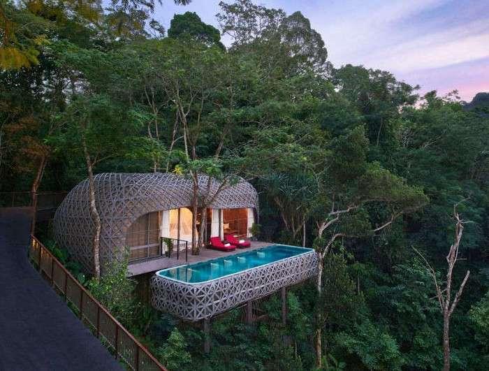 10 экзотических отелей на деревьях (11 фото)
