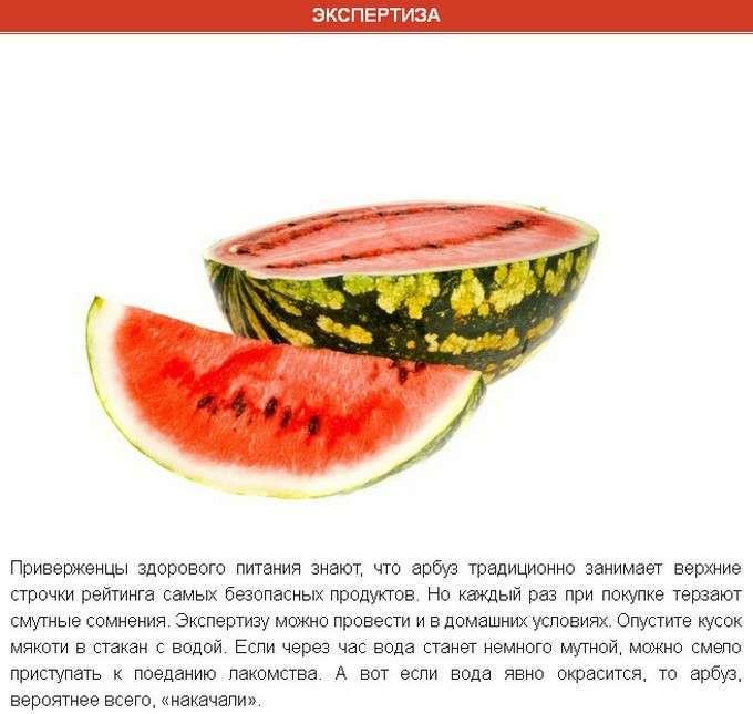 Интересные факты об арбузе (8 фото)