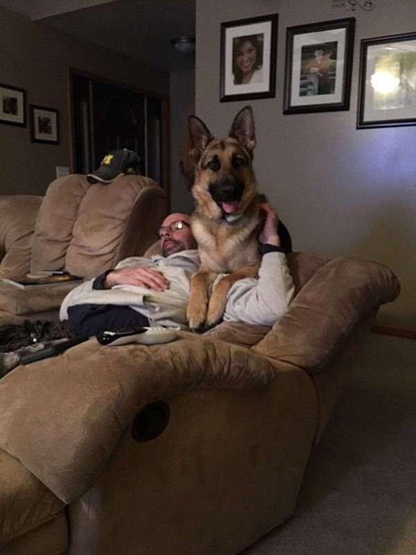 Отцы, которые запрещали приводить в дом -ЭТУ чертову собаку-..и вот как оно теперь! (16 фото)