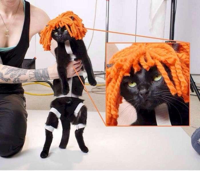 Подборка забавных картинок из Интернета (52 фото)