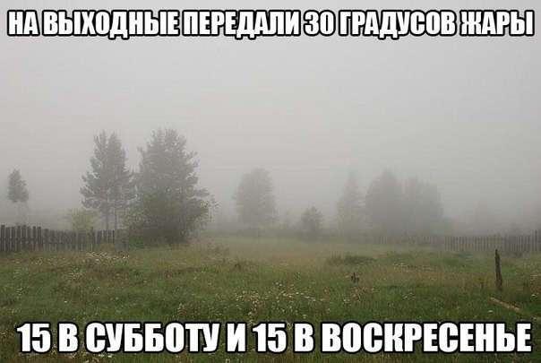 -Вот такое вот хреновое лето- (14 фото)