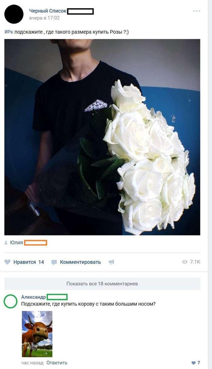 Смешные комментарии и высказывания из социальных сетей (35 фото)