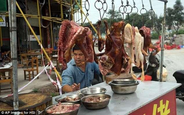 Едим, ели и будем есть: почему китайцы не желают отказаться от собачьего мяса? (14 фото)