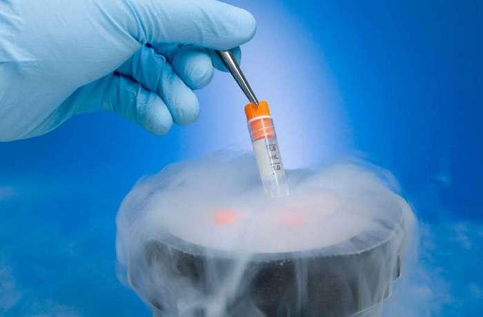 В Нидерландах владелец банка спермы признался, что подменял семя доноров на свое (3 фото)