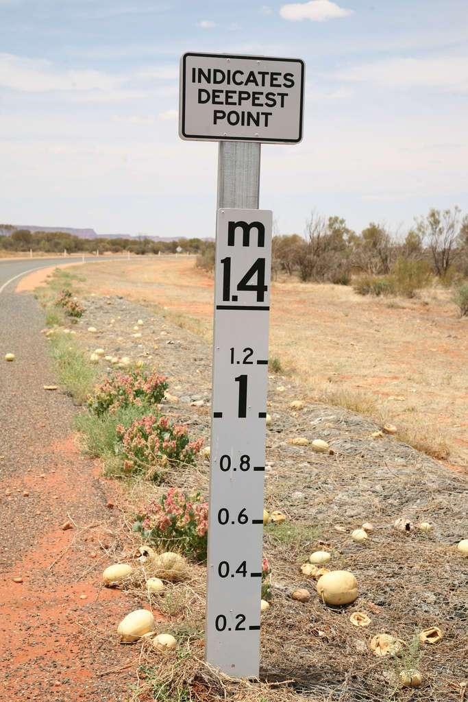 Зачем австралийцам линейки на дорогах (17 фото)