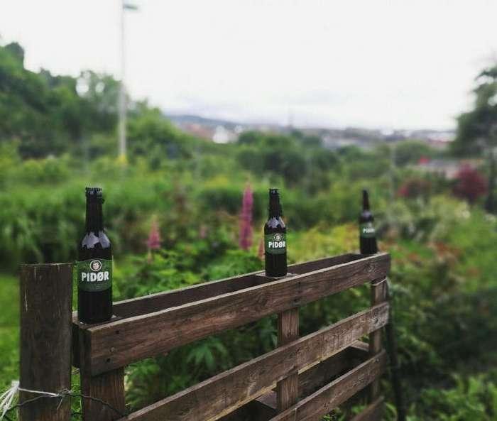 Ты - это то, что ты пьёшь: Россиянин начал производить в Норвегии пиво Pidør (3 фото)