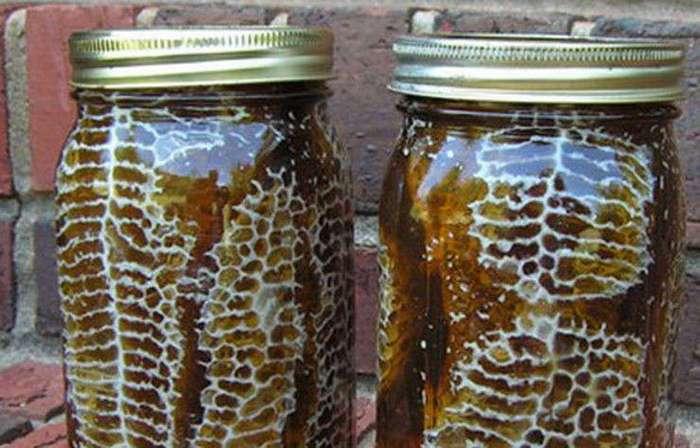 Мёд сразу в банках? Гениальное решение для тех, кто решил заняться пчёлами (11 фото)