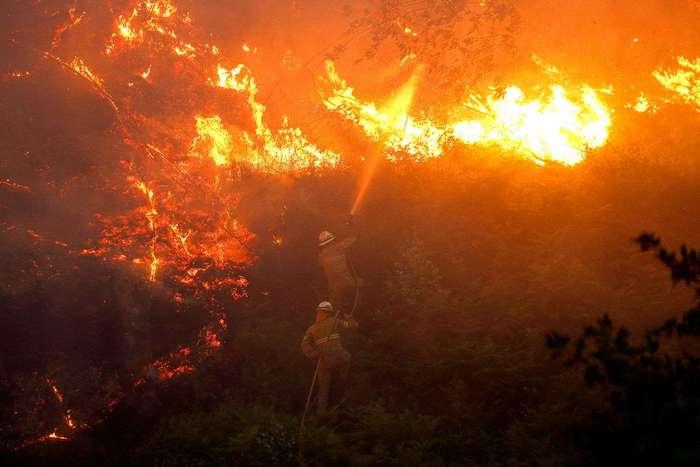Лесные пожары в Португалии убили больше 60 человек (22 фото)