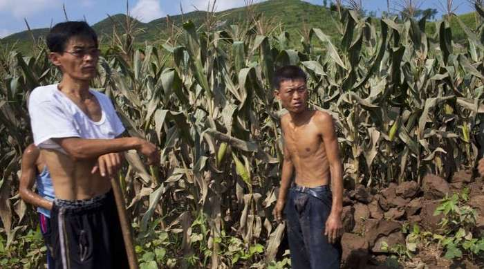 15 обычных вещей, которые ограничены или запрещены в Северной Корее (16 фото)