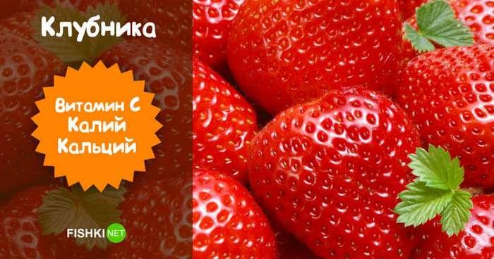 С одной ягодки сыт не будешь... или будешь?! (10 фото)