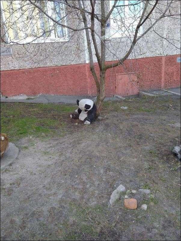 Подборка фото приколов, ч 3 (27 фото)