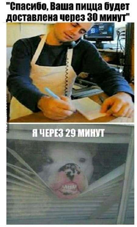 Картинки с надписями и без (27 фото)