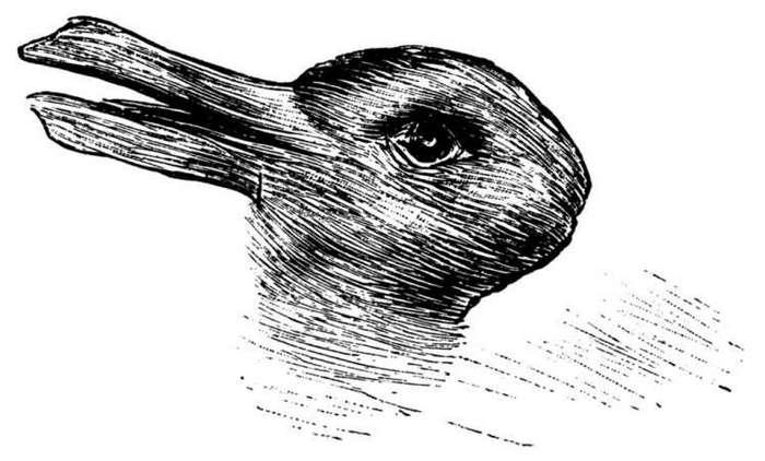 Кролик или утка? Вот что это изображение может рассказать о вас