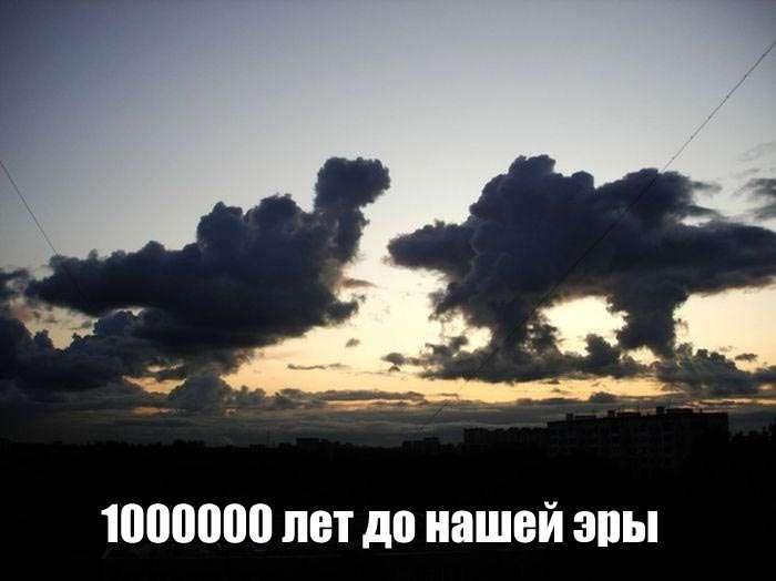 Подборка прикольных фото N1643 (100 фото)