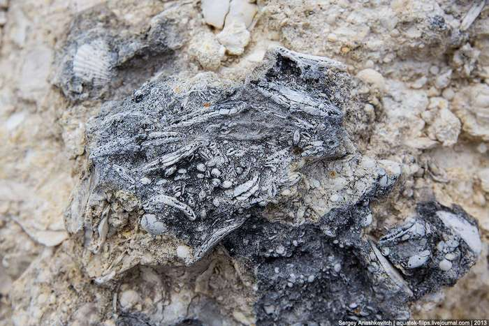 Ак-Кая или Белая скала &8211; каменная красавица Крыма