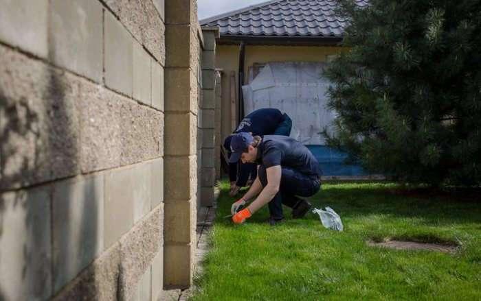 Сам себе газонокосильщик: садовый робот, который будет поддерживать участок в порядке