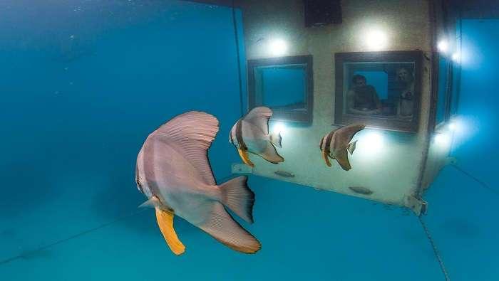 В этом мини-отеле все отдыхающие стремятся попасть туда, что скрыто под водой