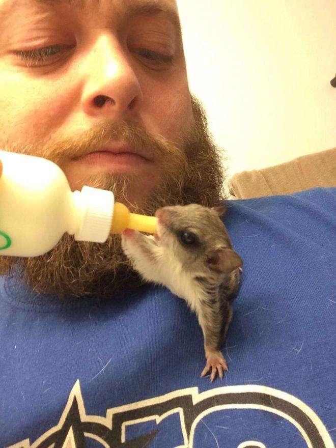 Парень сжалился и забрал неведомое существо домой. А оказалось — нашел друга всей жизни (6 фото + видео)
