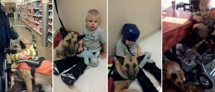 Мальчик неизлечимо болен, а собака обречена на смерть. Но вместе они смогли спасти жизнь друг другу (4 фото + видео)
