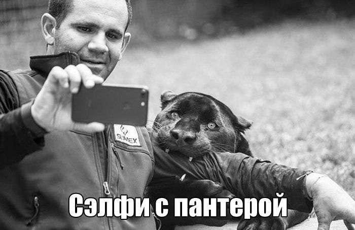 Прикольные картинки (47 фото)
