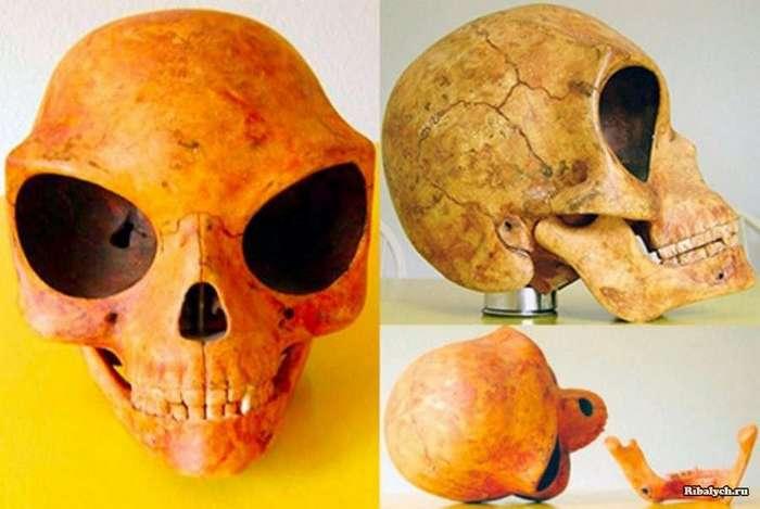 Силендский череп (6 фото)