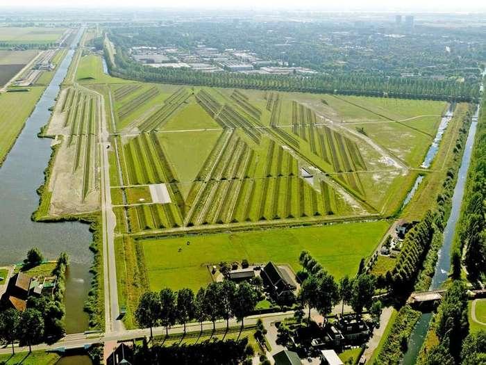 Зачем на поле построили холмы с траншеями? (8 фото)