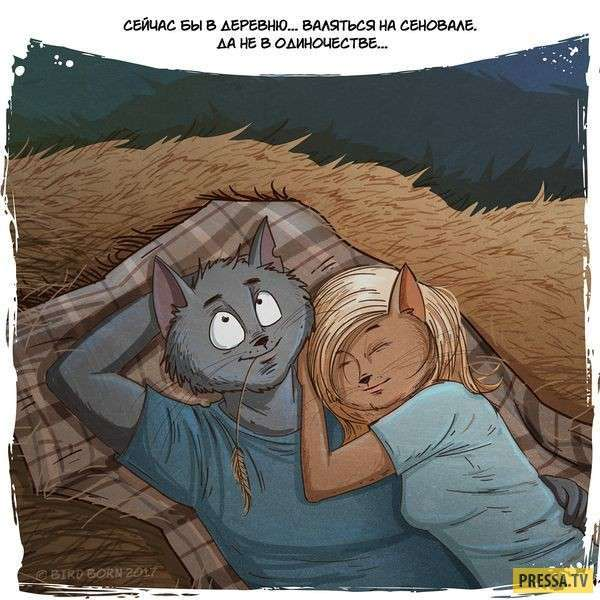 Деревенские прелести в комиксах (10 фото)