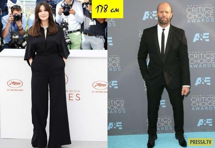 Какого роста знаменитости (24 фото)