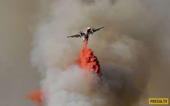 Пожары на юге Европы (15 фото)