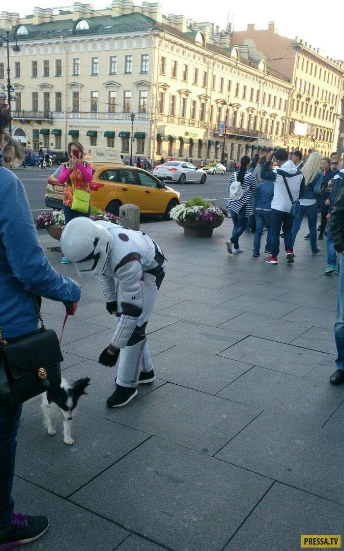 Странные и модные персонажи на улицах Санкт-Петербурга (35 фото)