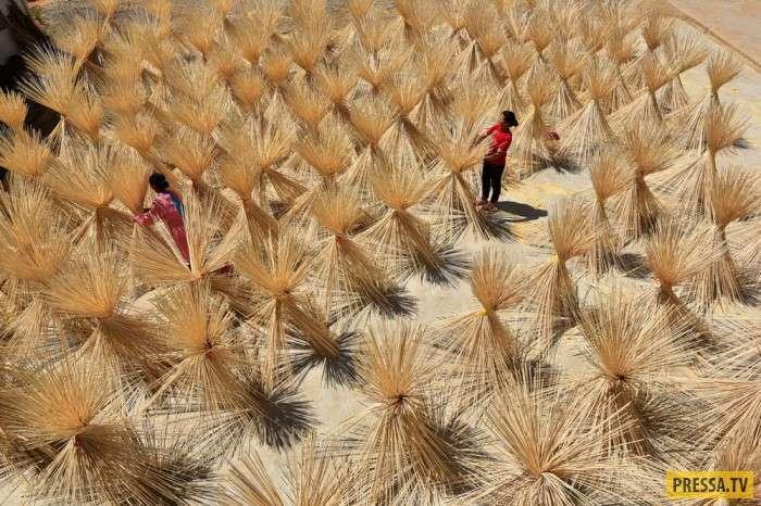 Интересные моменты жизни людей в Китае (25 фото)