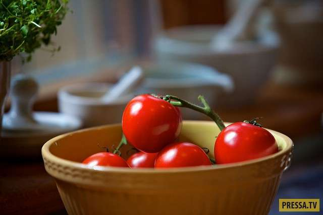ТОП-10 продуктов, замедляющих старение