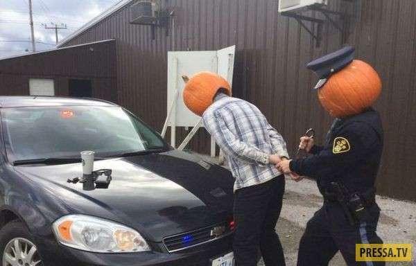 Странности, которые вы можете увидеть в Канаде (17 фото)