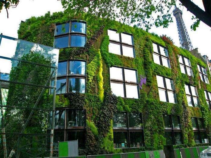 Вертикальные сады Патрика Блана (22 фото)