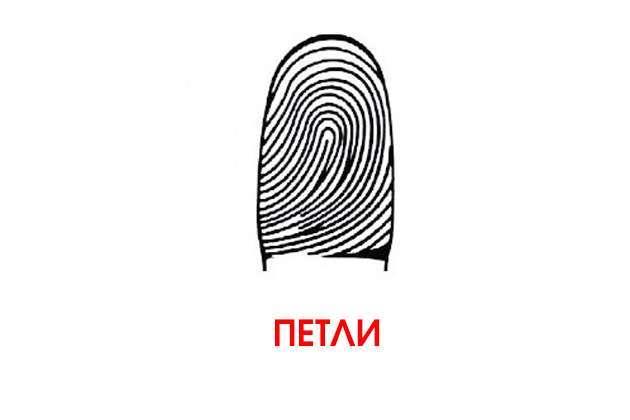 Вот что могут рассказать о характере и способностях отпечатки пальцев. Научный подход!