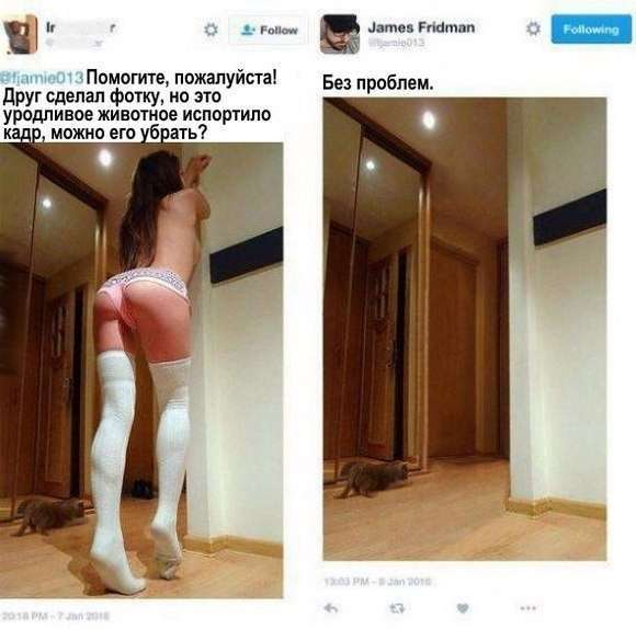 Смешные комментарии из социальных сетей (20 фото)