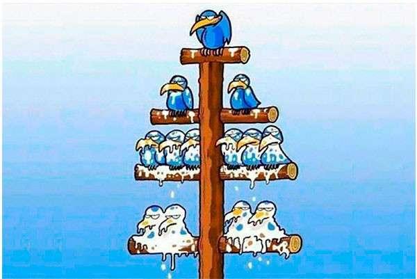 Парадоксы бизнеса (1 фото)