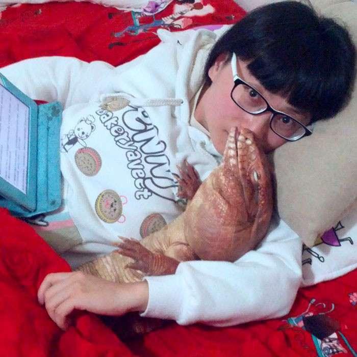 Ящерица стала звездой интернета! (14 фото + 2 гиф)