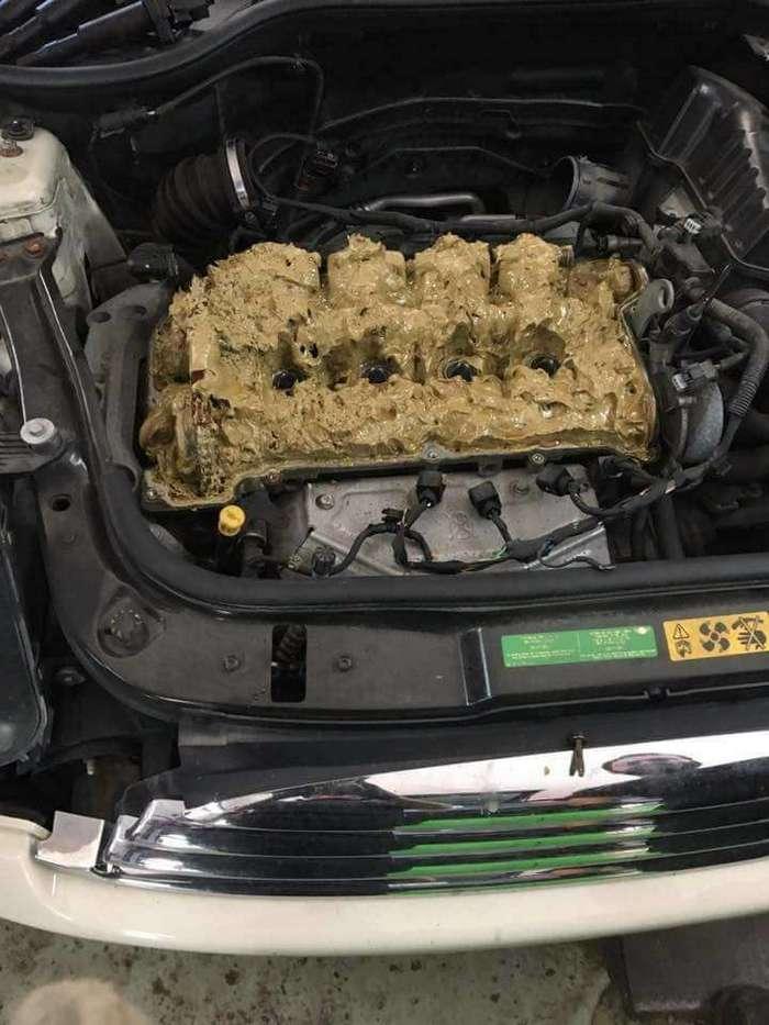 Девушка случайно залила в двигатель -омывайку- вместо масла. Вот что получилось (5 фото)