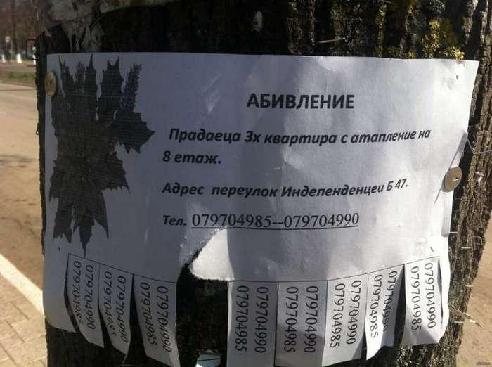 Учите русский язык, господа! (24 фото)