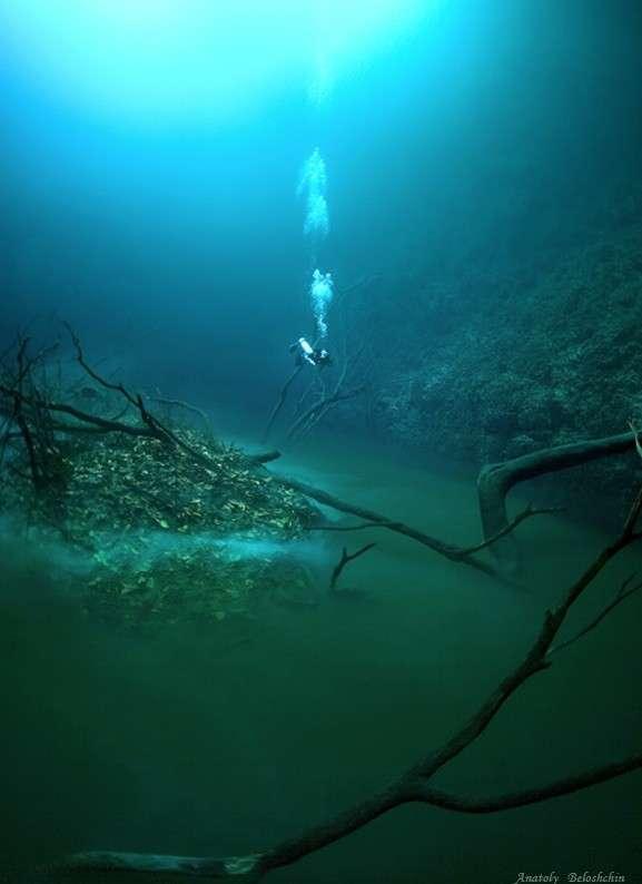 Скрытая от глаз подводная река, протекающая вдоль океанского дна в Мексике (8 фото)