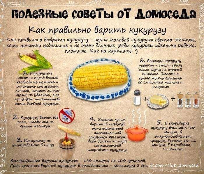 Полезные советы от домоседа (11 фото)