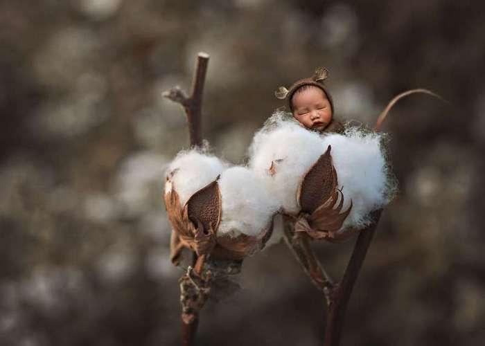 Младенцы становятся обитателями волшебных миров благодаря фантазии фотохудожницы (10 фото)