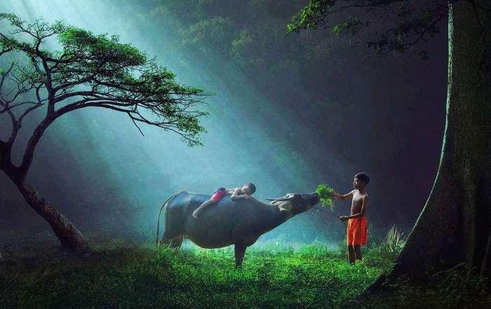 25 потрясающих фотографий, в реальность которых сложно поверить (26 фото)